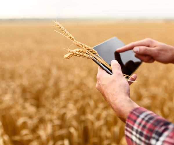 Agriculture ERP
